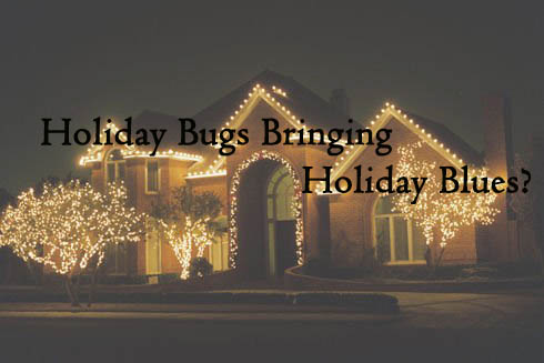 Holiday Bugs Bring on Holiday Blues?