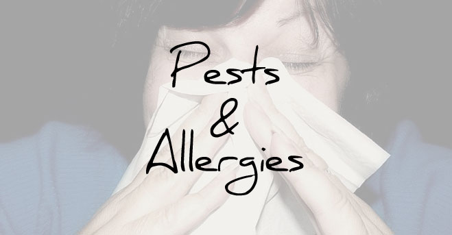 Pests & Allergies